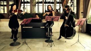 Kvartet Cinderella-Dve gitare