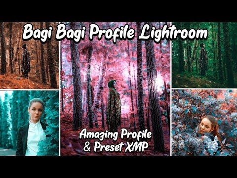 50K Subscriber, Bagi2 Profil & Presets XMP Terkeren | Lightroom Mobile
