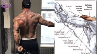 18 Ejercicios para añadir a tu Rutina de Hombros, 18 Exercises to add to your Shoulder Routine