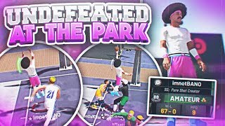 I AM UNDEFEATED WITH MY NEW PURE SHOT CREATOR BUILD! BEST SHOT CREATOR BUILD ON NBA 2K19!