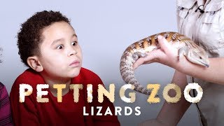 Lizards | Petting Zoo | HiHo Kids