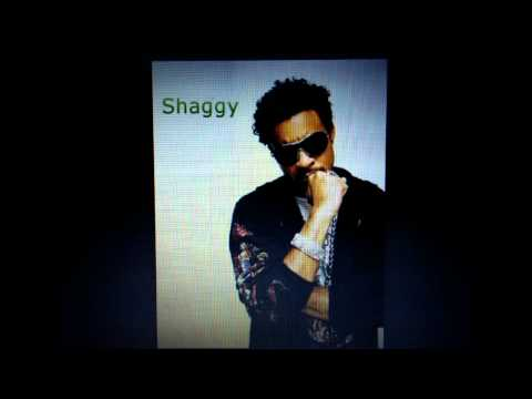 Shaggy - long time (street bullies riddim)