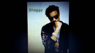 Shaggy - long time (street bullies riddim)