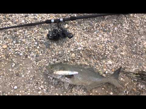 Surf Fishing with Slap Jackson June 30, 2015