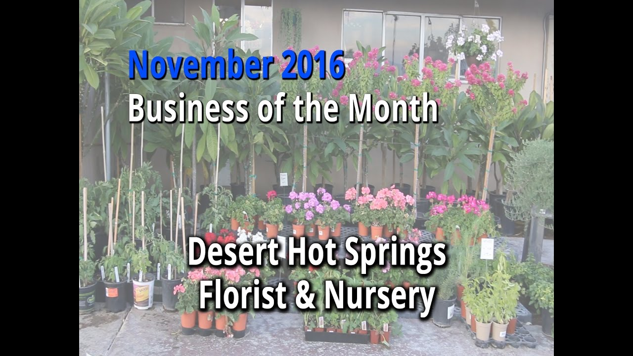 Business Of The Month November 2016 Desert Hot Springs Florist
