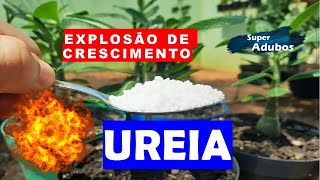 Ureia – Uma Explosão De Crescimento Para Suas Plantas