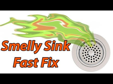 Kitchen Sink Drain Smells Moldy | Wow Blog