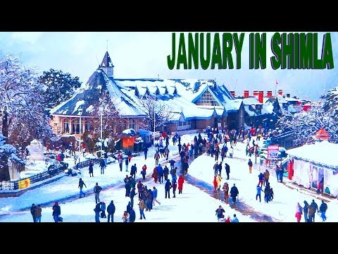 AMAZING BEAUTY OF SHIMLA IN JANUARY