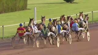 Vidéo de la course PMU PRIX RATTJASKA