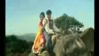 BAHARON PHOOL BARSAAO MERA MEHBOOB AAYA HAI....covered by ROHIT