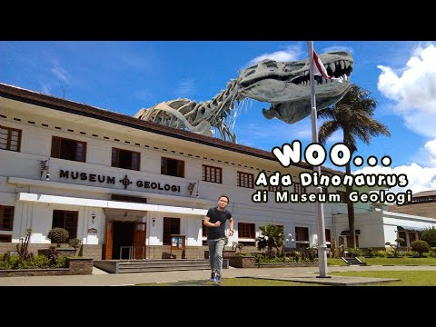 educational-tourism-at-the-bandung-geology-museum-|-there-are-dinosaur-fossils-and-ancient-humans