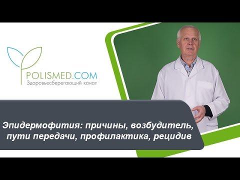 Чем лечить лишай у человека: эффективные препараты и
