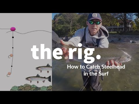 How To Catch Steelhead In The Surf