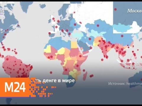 """""""Прямо и сейчас"""": лихорадочный отпуск - Москва 24"""
