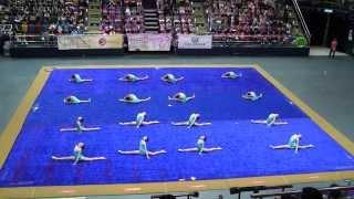 2015年香港普及體操節~海霸街官立小學