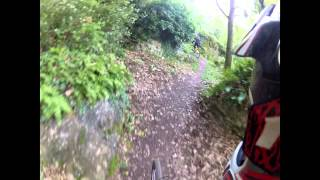 Portofino Bike - monte pollone