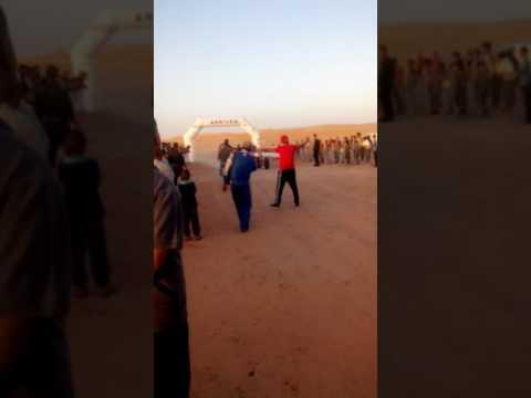 Ralley sahari Algeria 2016