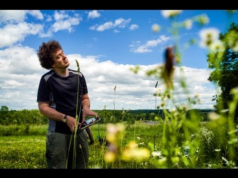 Bug Music: David Rothenberg's Insect Choir