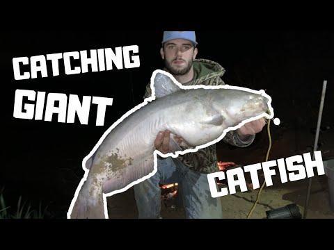 Trinity River FISHING!! Catching GIANT CATFISH!!