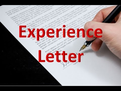 Importance Of An Experience Letter (what Is It? Usage, Crucial Points And Points To Remember)