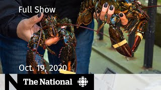 CBC News: The National | MPs debate response to N.S. lobster fishery dispute  | Oct. 19, 2020