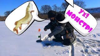 Решил проветрить свои жерлицы - ох и набегался! Зимняя рыбалка на жерлицы 2018