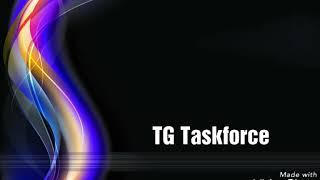 TG Taskforce 3