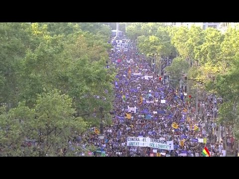 Nearly half a million people march against violence in Spain