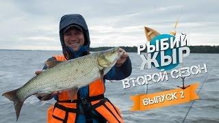 Ловля трофейного жереха на Волзі. Рибалка серпень 2015. Другий сезон, 2 серія.