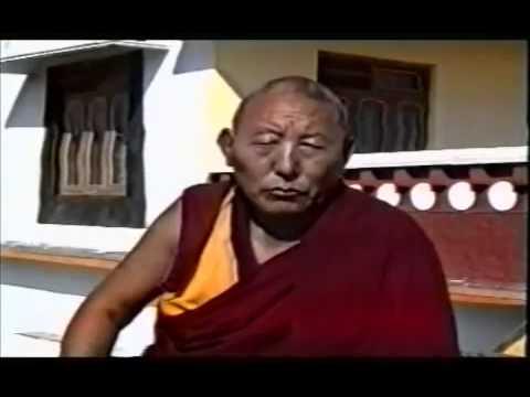 The real reason the Sakya Trizin resigned   Dorje Shugden
