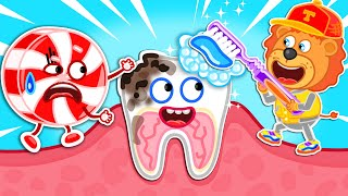 Don't Eat Candy! Brush Your Teeth Now #2. Kids Healthy Habits   Lion Family   Cartoon for Kids