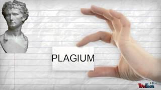 Derechos de autor y plagio