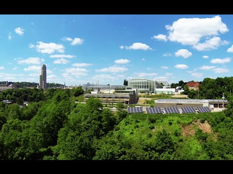 University of Pittsburgh Campus | PittLiveWire