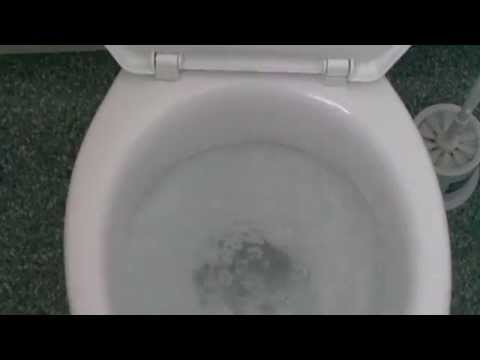 Hospital Toilet #59