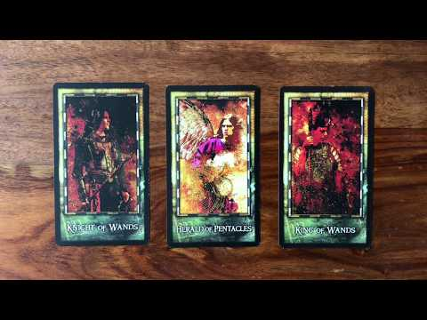 Tarot Scott Reading June Gregory for Daily 2017 16