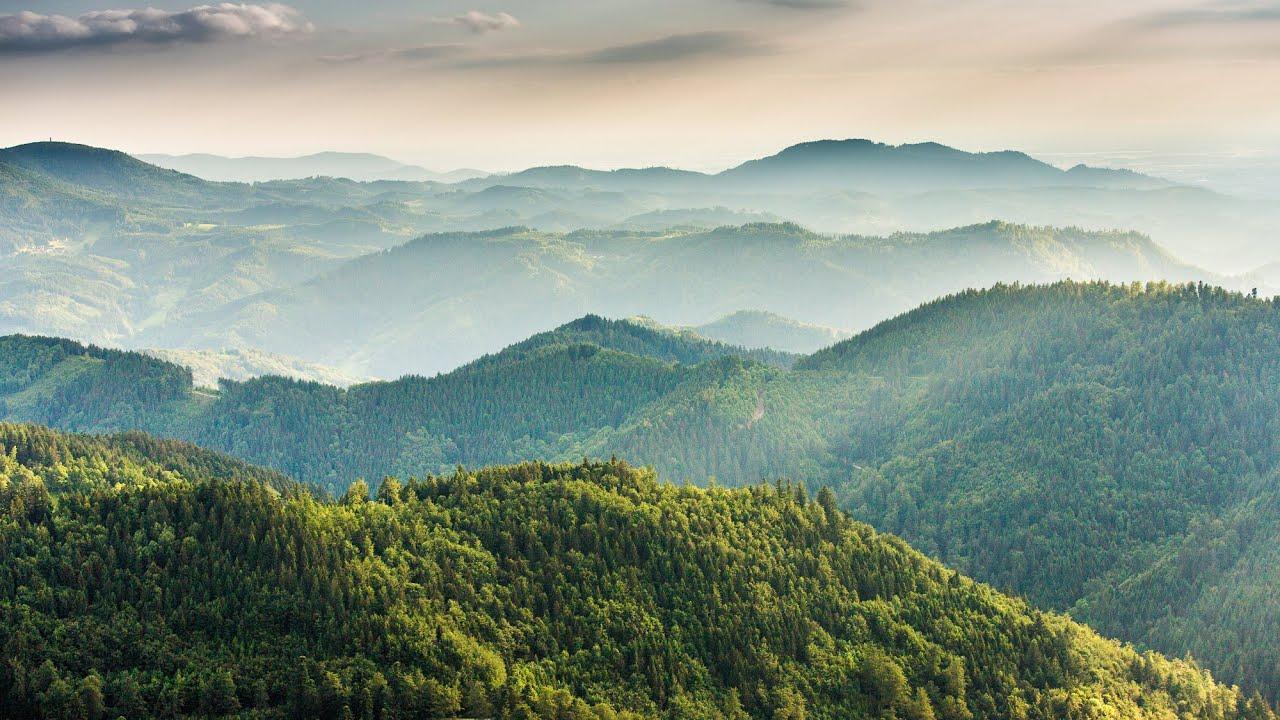 Ausfl ge ferienwohnung appartement titisee neustadt im for Ferienwohnung im schwarzwald