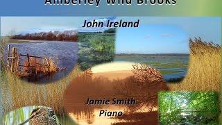 John Ireland - Amberley Wild Brooks