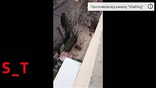 ШОК! Падение кота с 15 метров.