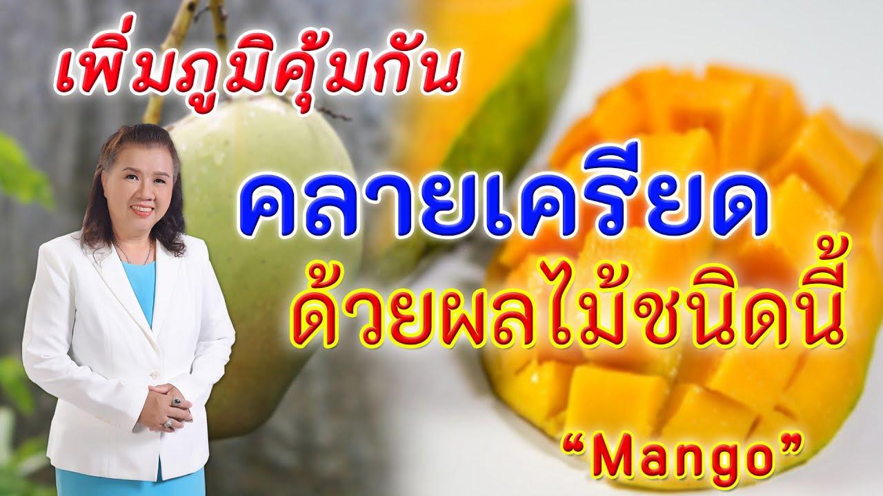 ห้ามพลาดเพื่อสุขภาพ!! เพิ่มภูมิคุ้มกัน คลายเครียดด้วยมะม่วง    mango   พี่ปลา Healthy Fish