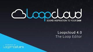 Loopcloud 40 Tutorial - The Loop Editor