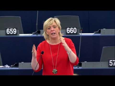 Tussenkomsten Hilde in Europees Parlement