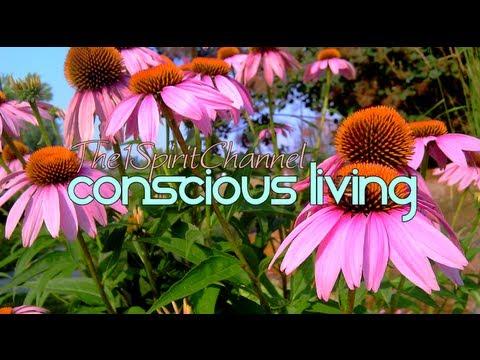 """Consciousness: The Natural Way of Living -  """"Life Quotes"""""""