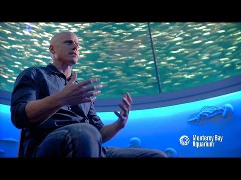 Seafood Watch - Nathan Lyon
