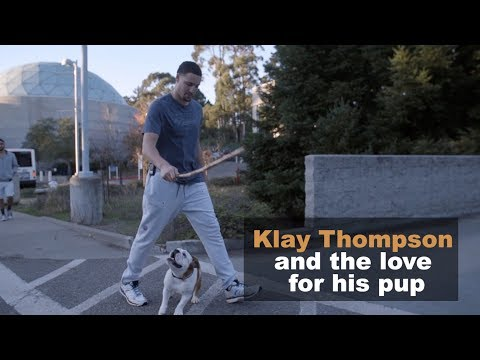 Klay Thompson and the love for his pup