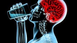 Как алкоголь влияет на мозг - научное мнение профессора Савельева