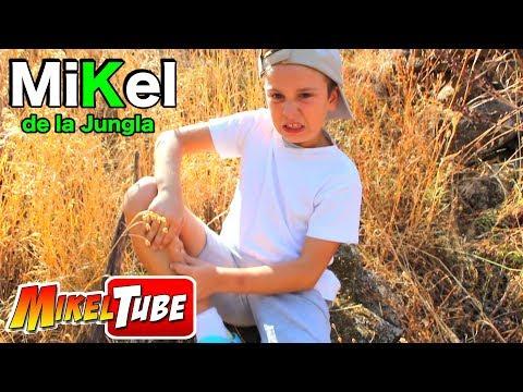 Mikel de la jungla 🐍🐵Aventuras con Animales 🐟