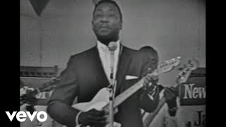 Muddy Waters - Rolling Stone(Catfish Blues) (Live) Video
