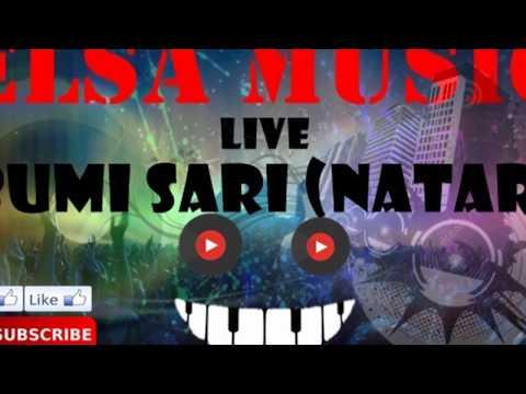 ELSA MUSIC LIVE BUMI SARI NATAR (2)