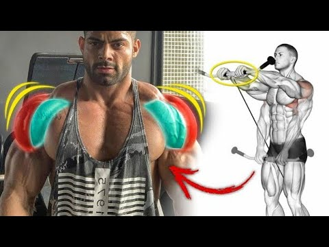 أقوى 6 تمارين لتكوير و تضخيم الكتف  Shoulder Exercices (أكتاف 3D)