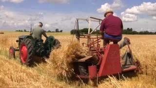 Công nghệ xanh | Thu hoạch cỏ khô nuôi bò siêu tiện lợi